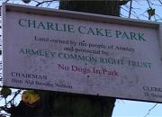 04 charlie cake